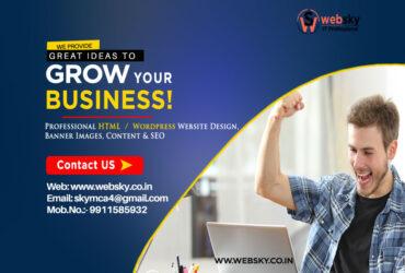 #1 Freelance Web Designer in Delhi | Web Design Service